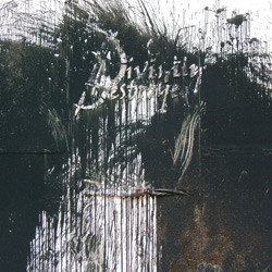 "Divinity Destroyed - ""The Plague"" CD/EP cover image - Click to read review"