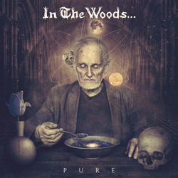 "In The Woods - ""Pure"" CD cover image"