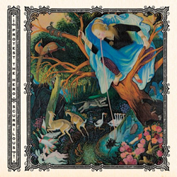 "Protest The Hero - ""Scurrilous"" CD cover image"