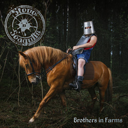 "Steve'n'Seagulls - ""Brothers In Farms"" CD cover image"