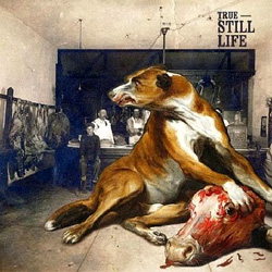 "True - ""Still Life"" CD cover image - Click to read review"