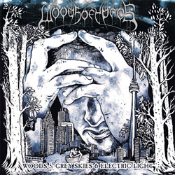 "Woods Of Ypres - ""Woods 5: Grey Skies & Electric Light"" CD cover image - Click to read review"